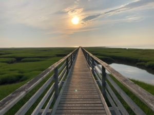 A large boardwalk jutting out as far as the eye can see over salt marshes at dusk.